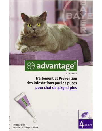 ADVANTAGE 80 - Pipette antipuces pour chats