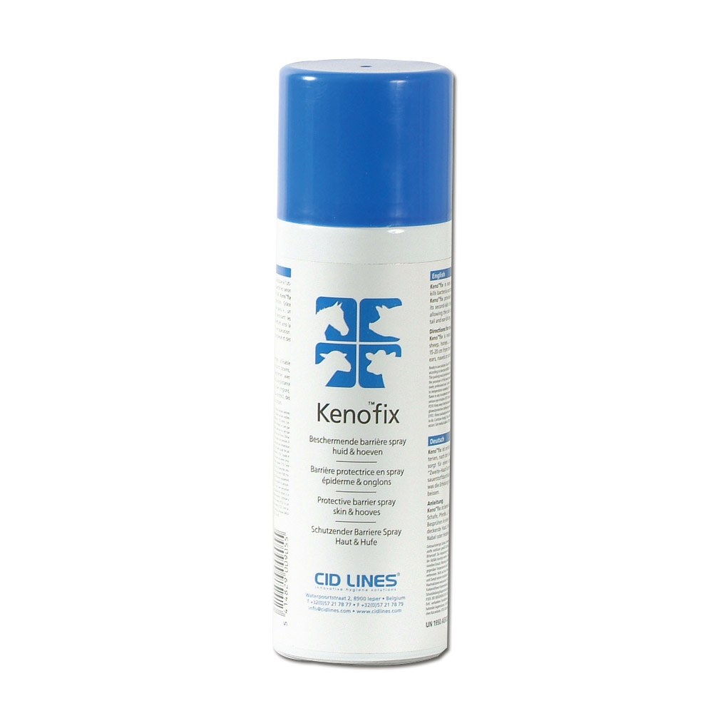 KENO FIX Spray 300 ml