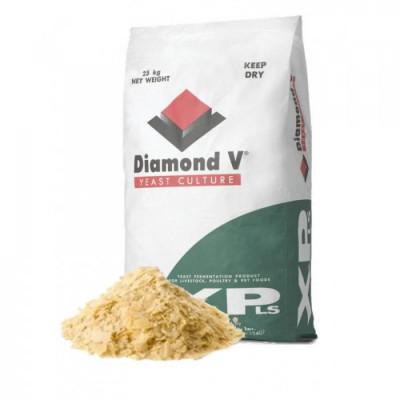 DIAMOND V XLS  pour CHEVAUX